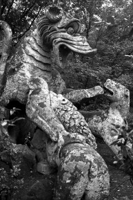 The Dragon and Wild Dogs. Sacred Woods of Bormazo. Lazio, Italy. (2013)